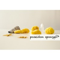 Natural Sea Sponge Tampon Set  5pcs - All Sizes